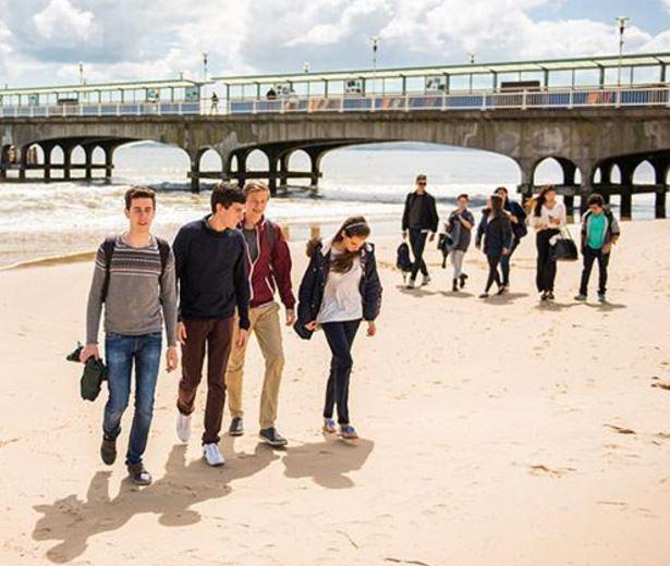 EFL Teacher For Summer Teens Programme